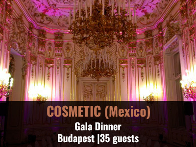 incentive-trip-cosmetic-budapest