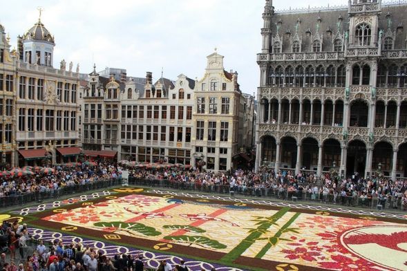 The Carpet of Flowers, Brussels