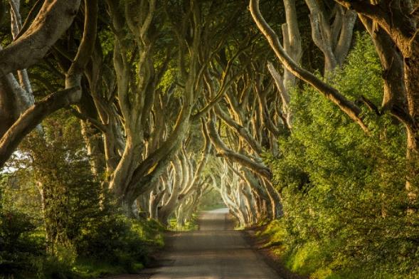 Game of Thrones-North Ireland